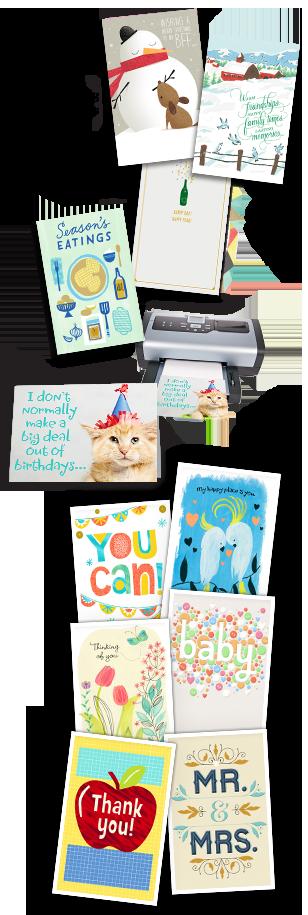 Hallmark Premium Blank 4x8 Photo Cards Greeting Card Software